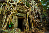 Ta Prohm at Angkor Wat, Cambodia Photographic Print by  EvanTravels