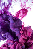 Ink Color Drop, Violet and Pink Photographic Print by  sanjanjam