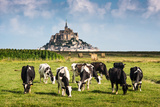 France Manche Mont Saint Michel Bay Listed as UNESCO World Herit Photographic Print by  ivoha13