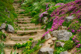 Stairway in Botanic Garden Photographic Print by  vector_master