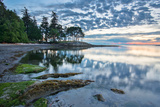Coast at Sunrise with Trees Reflected Photographic Print by  james_wheeler