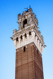 Mangia Tower in Siena, Tuscany, Italy Photographic Print by  patronestaff