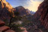 View of Zion Canyon National Park from Angel's Landing Trail Photographic Print by  EvanTravels