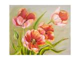 Vintage Red Tulips. Prints by  Valenty