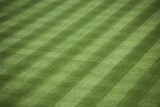 Baseball Stadium Grass Photographic Print by  justinkendra