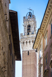 Mangia Tower Seen from the Streets of Siena in Tuscany Photographic Print by  patronestaff