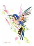 Hummingbird Flying Poster par Suren Nersisyan