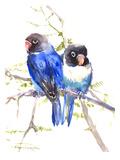 Blue Masked Lovebirds Reproduction procédé giclée par Suren Nersisyan