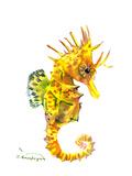 Baby Seahorse Art by Suren Nersisyan