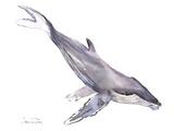 Humpback Whale Art by Suren Nersisyan