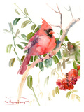 Northern Cardinal And Berries Art by Suren Nersisyan