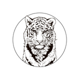 Graphic Drawing of a Bengal Tiger. Wildlife. Big Cat Posters by  MargaritaSh