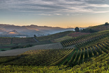Langhe Photographic Print by  lucianofochi