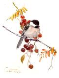 Chickadee Posters by Suren Nersisyan