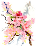 Cherry Blossom3 Prints by Suren Nersisyan