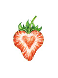 Strawberry Love. Water Color Drawing of Strawberry Prints by  MargaritaSh