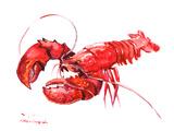 Lobster Poster von Suren Nersisyan