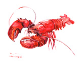 Lobster Posters by Suren Nersisyan