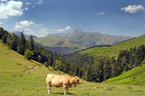 View from Col Du Aspin, France, Pyrenees Photographic Print by  Pecold