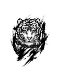 Bengal Tiger. Graphic Drawing Poster by  MargaritaSh