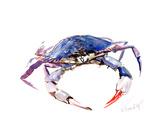 Blue Crab Art by Suren Nersisyan
