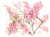 Cherry Blossom Plakater af Suren Nersisyan