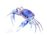 Blue Crab 2 Posters af Suren Nersisyan