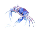 Blue Crab 2 Posters by Suren Nersisyan