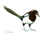 Magpie Prints by Suren Nersisyan