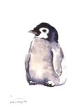 Baby Penguin Prints by Suren Nersisyan