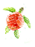 Sea Turtle Red-Green Poster van Suren Nersisyan