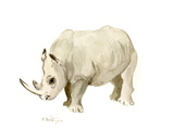 Rhino White Posters by Suren Nersisyan