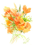 California Poppies Posters by Suren Nersisyan