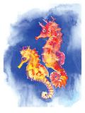 Seahorses Poster by Suren Nersisyan