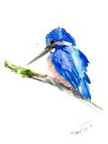 Martin-pêcheur Posters par Suren Nersisyan