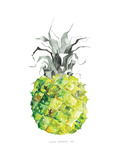Pineapple_yellow Prints by Claudia Libenberg