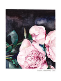 Blooms On Black 1 Giclée-tryk af Claudia Libenberg