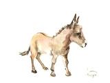 Donkey Prints by Suren Nersisyan