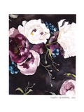Blooms On Black 5 Poster by Claudia Libenberg