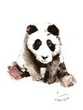 Baby Panda Posters by Suren Nersisyan