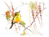 Warbler In Spring Print by Suren Nersisyan