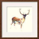 Deer Wearing Gym Socks Print by Charmaine Olivia