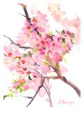 Sakura Poster por Suren Nersisyan