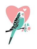 Parakeet-3 Poster par Jilly Jack Designs
