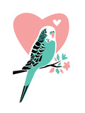 Parakeet-3 Poster by Jilly Jack Designs