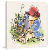 Reading in the Grass Paddington Bear Print on Canvas Gallery Wrapped Canvas by Peggy Fortnum