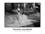 Ballerina Stretching Side Stage School of American Ballet Workshop Rehearsal No. 2 Photographic Print by Michael Halsband
