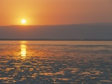 Sunset on the Dead Sea, Jordan, Middle East Metal Print by Alison Wright