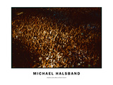 Audience from above at Rock Concert Photographic Print by Michael Halsband