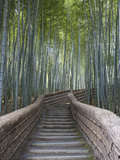 Stairway Through Bamboo Grove Above Adashino Nembutsu-Ji Temple Metal Print by Brent Winebrenner